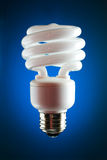CFL lightbulb, back lit. Back lit compact fluorescent bulb with blue gradient background stock photography