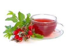 Chá 02 do quadril de Rosa Imagem de Stock