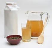 Chá 1 de Kombucha Fotografia de Stock