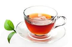 Chá. Imagem de Stock Royalty Free