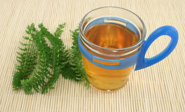 Chá Foto de Stock Royalty Free