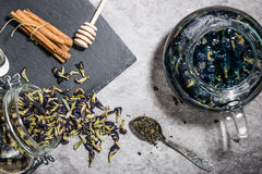 Chá azul Fotos de Stock Royalty Free