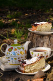 Chá bebendo com biscoito dois Fotografia de Stock Royalty Free
