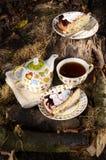 Chá bebendo com o biscoito para dois Imagens de Stock Royalty Free