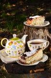 Chá bebendo com o biscoito para dois Foto de Stock