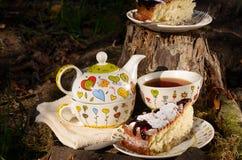 Chá bebendo com o biscoito para dois Fotografia de Stock