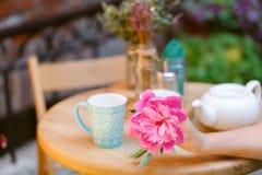 Chá bebendo de assento da mulher em um café com flor à disposição Imagem de Stock Royalty Free
