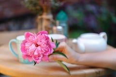 Chá bebendo de assento da mulher em um café com flor à disposição Imagens de Stock Royalty Free