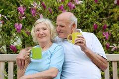 Chá bebendo dos pares superiores loving no jardim Imagens de Stock Royalty Free