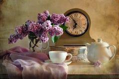Chá-beber Foto de Stock