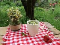 Chá-beber no jardim imagem de stock