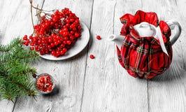 Chá com airela Imagem de Stock