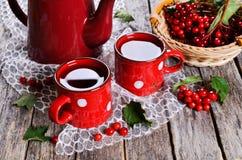 Chá com bagas Imagem de Stock