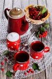 Chá com bagas Imagem de Stock Royalty Free