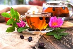 Chá com cão-rosa secada Foto de Stock