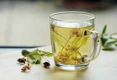 Chá com cal imagem de stock