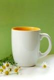 Chá com camomila Imagens de Stock Royalty Free