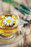 Chá com camomila e ervas Imagem de Stock Royalty Free