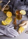 Chá com especiarias fotografia de stock