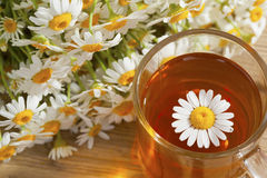 Chá com flores da camomila Foto de Stock
