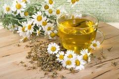 Chá com flores da camomila Imagem de Stock Royalty Free