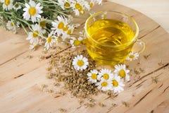 Chá com flores da camomila Fotografia de Stock