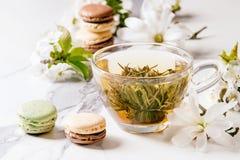 Chá com flores da mola imagens de stock royalty free