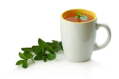Chá com hortelã Imagens de Stock