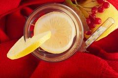 Chá com limão Imagem de Stock
