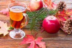 Chá com limão e canela Imagem de Stock Royalty Free