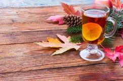 Chá com limão e canela Imagem de Stock