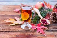 Chá com limão e canela Imagens de Stock