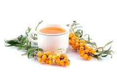 Chá com mar-espinheiro cerval Imagens de Stock Royalty Free