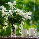 Chá com o jasmim Foto de Stock Royalty Free