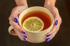 Chá com o limão nas mãos fêmeas com tratamento de mãos bonito Foto de Stock