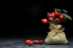 Chá com quadris de Rosa Imagem de Stock Royalty Free
