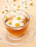 Chá com uma camomila Foto de Stock Royalty Free