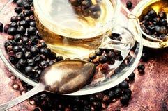 Chá com zimbro foto de stock