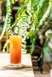 Chá congelado do limão Imagem de Stock