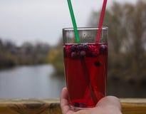Chá da bolha com romã, chá verde e framboesa em uma mão da menina Fotos de Stock