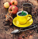 Chá da fermentação Foto de Stock