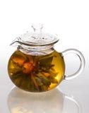 Chá da flor Imagens de Stock