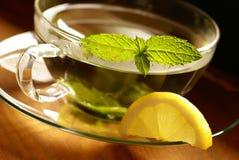 Chá da hortelã Foto de Stock