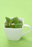 Chá da hortelã fotografia de stock