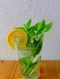 Chá da hortelã no vidro Fotos de Stock