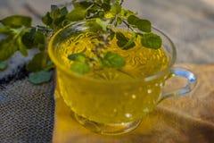 Chá da manjericão santamente, tulsi, tenuiflorum do Ocimum, em um copo transparente com as folhas benéficas para doenças cardíaca Imagens de Stock Royalty Free