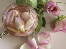Chá da pétala de Rosa em um vidro fotos de stock