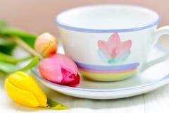 Chá da primavera foto de stock royalty free