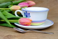 Chá da primavera fotografia de stock royalty free