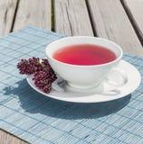 Chá da romã Fotografia de Stock Royalty Free